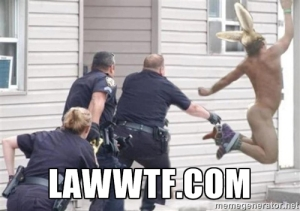 WTF Laws LawWTF.com FOLLOW US! WTF! Laws, Lawyers, Police, Lawsuits, Judges, Court - EVERYTHING THAT MAKES YOU SAY WTF!